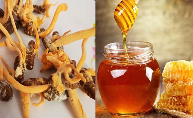 Đông trùng hạ thảo ngâm mật ong khá phổ biến