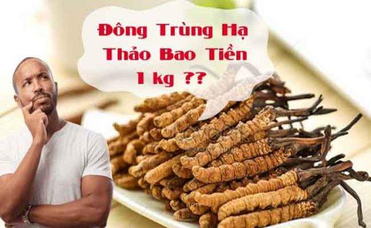 Đông trùng hạ thảo Tây Tạng có múc giá đắt nhất hiện nay