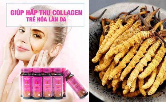 ĐTHT collagen làm đẹp da và bổ dưỡng
