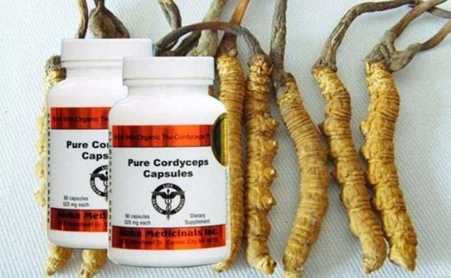 Sản phẩm ĐTHT Pure Cordyceps của Mỹ bán chạy hiện nay