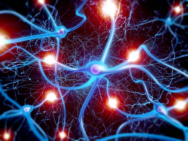 Rối loạn dẫn truyền thần kinh gây xuất tinh không kiểm soát