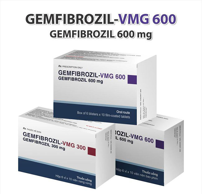 Gemfibrozil - Thuốc điều trị máu nhiễm mỡ nhóm fibrat