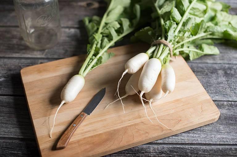 Củ cải là một trong những đồ ăn tốt cho người mắc bệnh gout (Bệnh thống phong)